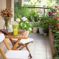 Vertical garden services in Ghaziabad